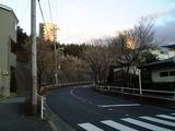 sakura_060320