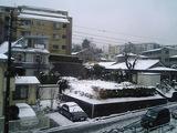 snow_20060207